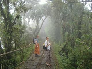 jungle-mist-sarongs