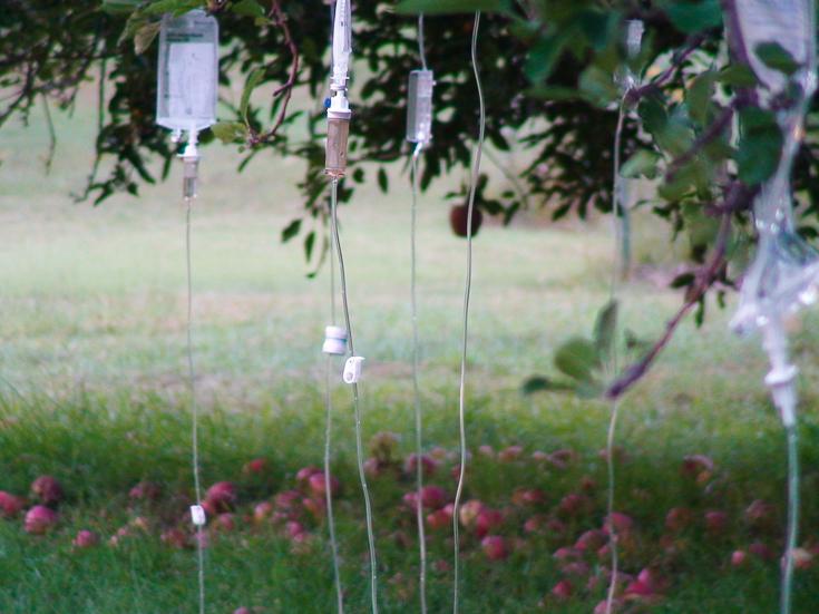 Installation-art-med-drips