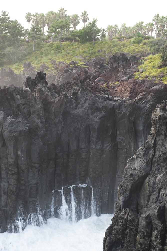 Jusangjeolli Cliff Jeju