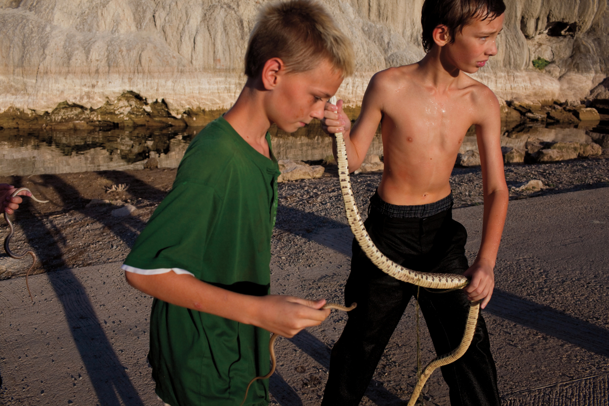 boys catch snakes